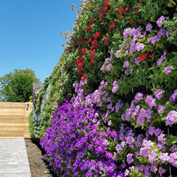 Florafelt Pro System living wall by Planted Design, San Francisco.