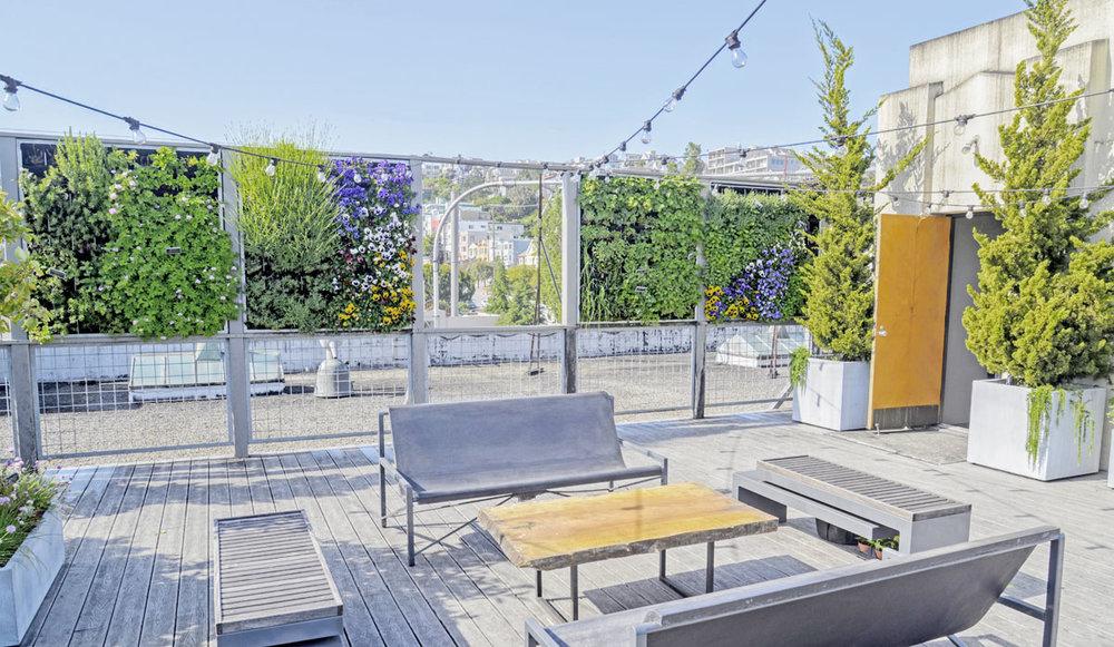 Florafelt Pro System. Living Green Design. Anchor Brewing Co., San Francisco.