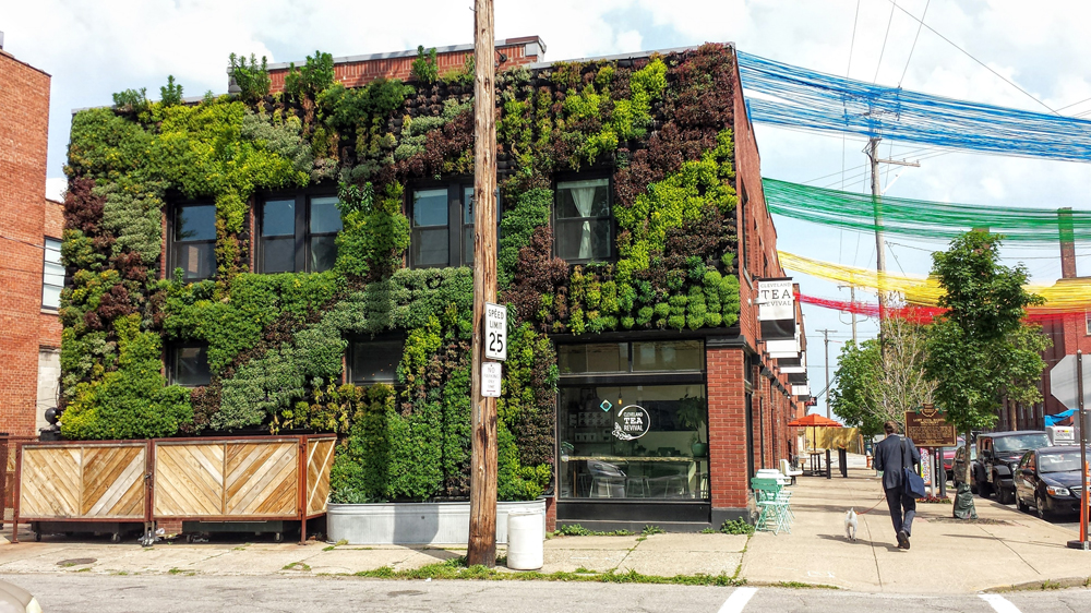 Florafelt Vertical Garden by Architect Marika-Shiori Clark for Cleveland's Hingetown Neighborhood.