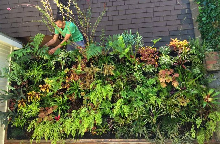 Florafelt Vertical Garden by Benjamin Heim of Groundcover Landscaping