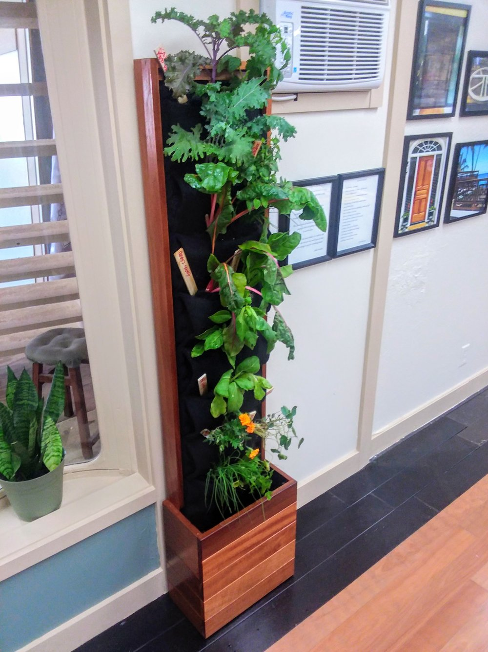 Florafelt Living Walls by Kieselbach Woodworks Hawaii