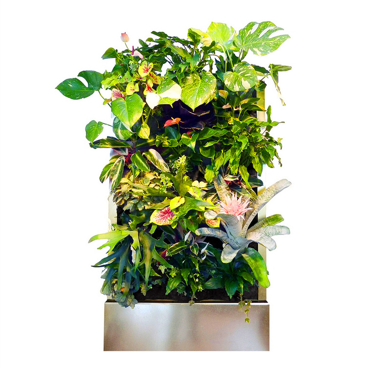 Florafelt Recirc Self-Watering Living Wall System