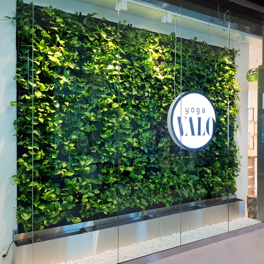Florafelt Pockets Living Wall for Yoga Valo by Pasi Lindberg of Viherolo Oy Finland.