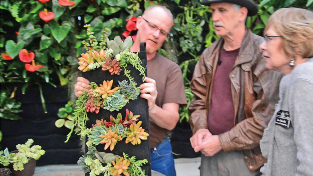 Chris Bribach demonstrates how to use succulents to create an easy vertical garden at the San Francisco Conservatory of Flowers.