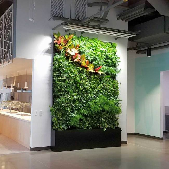 Florafelt Pocket Panels custom recirculating vertical garden for Google Sunnyvale Campus by Planted Design.
