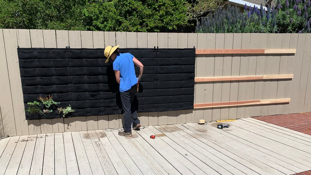 Wood Supports protect the fence from moisture buildup for this Florafelt Pockets living wall by Planted Places.