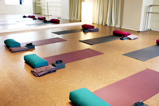 Studio with mats setup for Yoga class