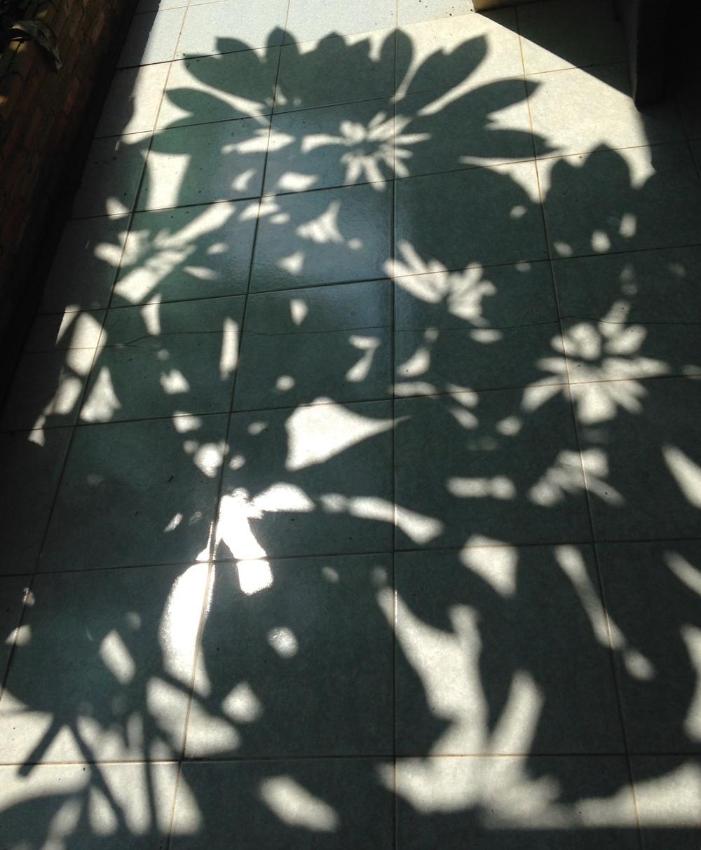 Shadows on the Floor, Ban Samrit