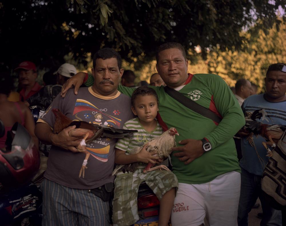 Familia Gallera