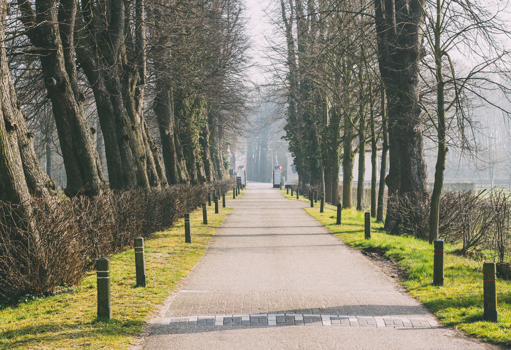Holland-47.jpg
