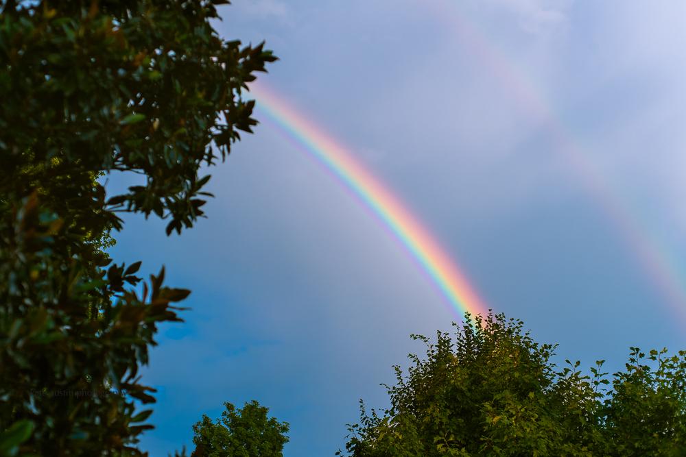 20160627-rainbow20160627.jpg