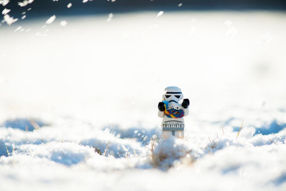 first_snow20161218-.jpg