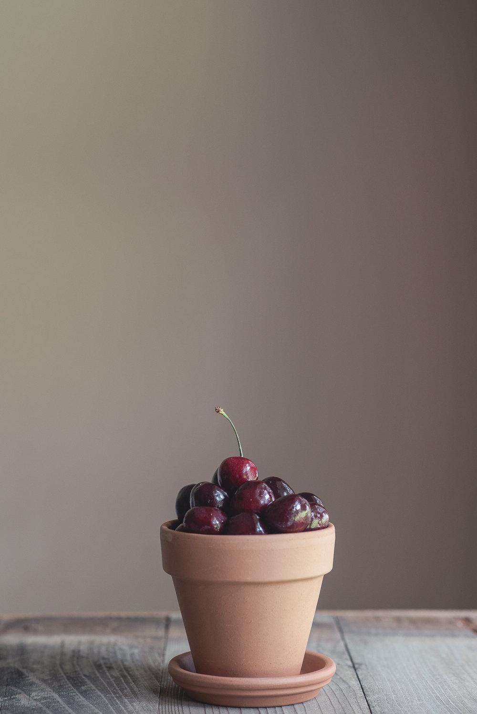 flowerpot_cherries.jpg
