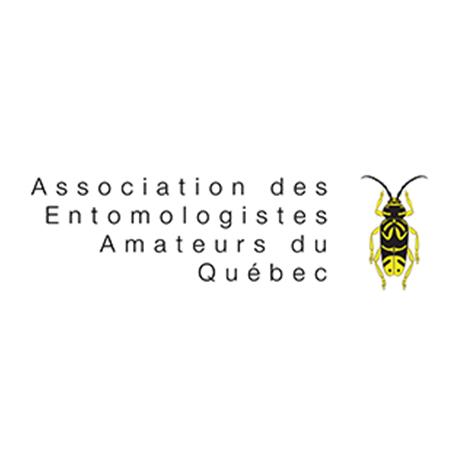Association des Entomologistes Amateurs du Québec