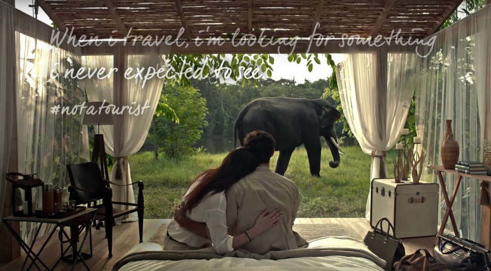 Visa #NotATourist - elephant.png