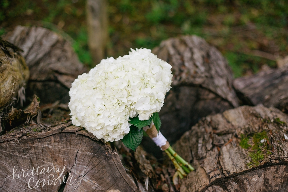 Knoxville Wedding Photographer_1410.jpg