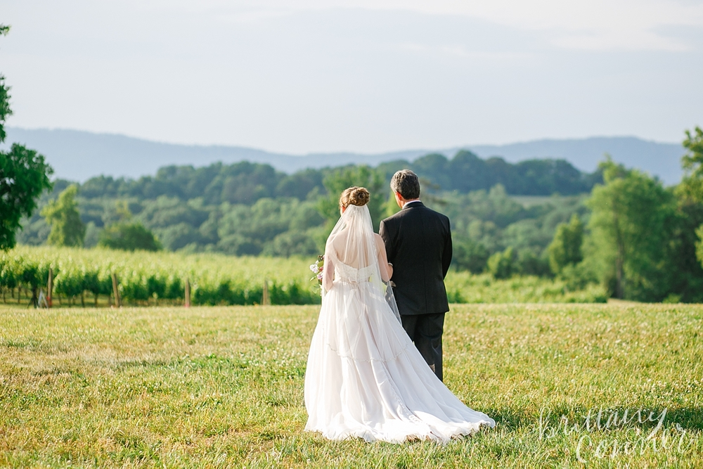 Knoxville Wedding Photographer_1625.jpg