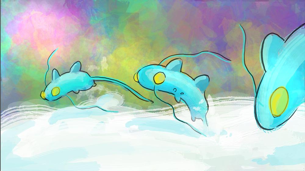breastmink-dolphins.jpg