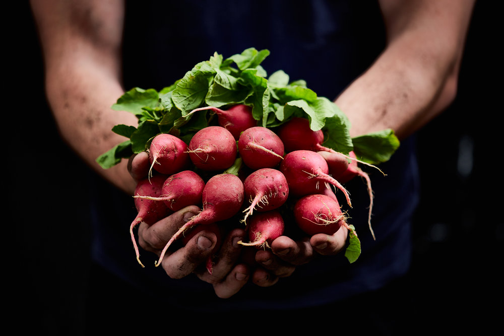 460_Shot_14_FarmerRadishes_332_HERO.jpg