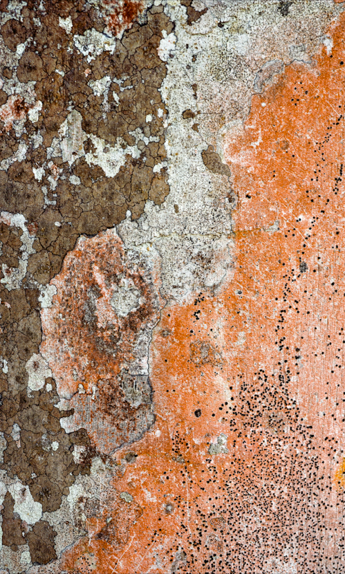 """Geodesia 1"", 2014, Archival pigment print face-mounted on acrylic, 31"" x 18.7"", 3/7 prints"