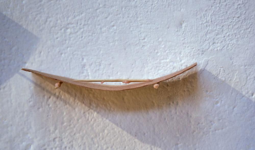 Toothpick slide.jpg