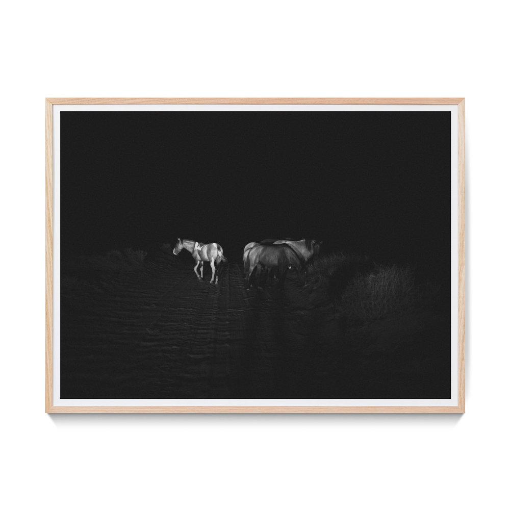WildHorses-Mock.jpg