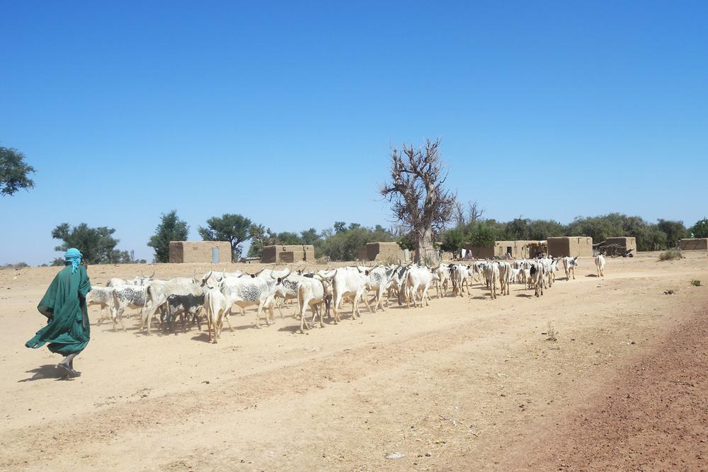 Kalabougou