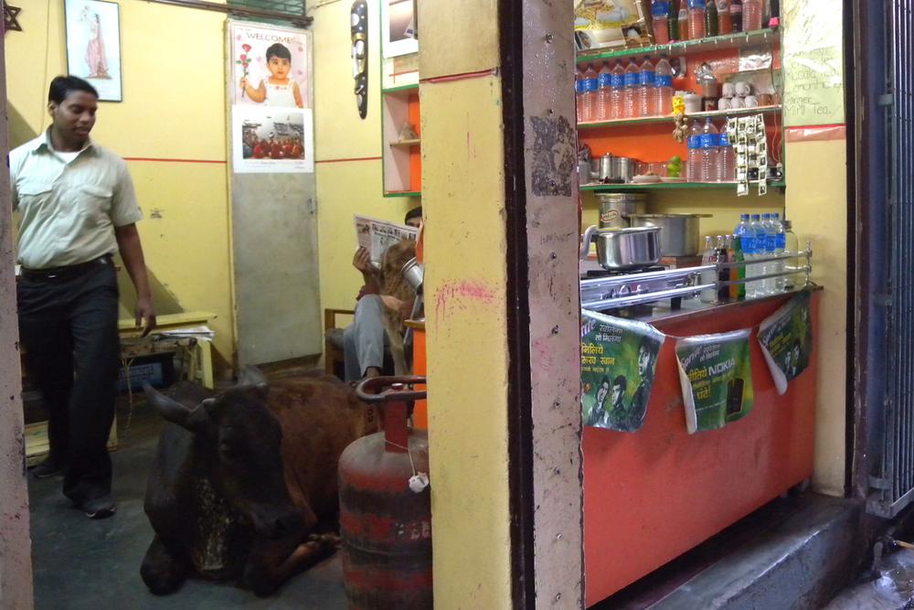 Nel bara Varanasi. India.