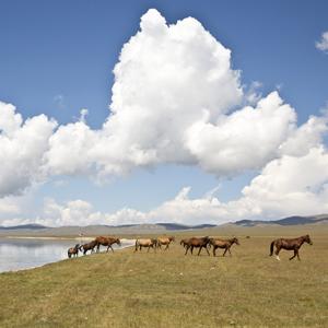 kirghizistantop.jpg