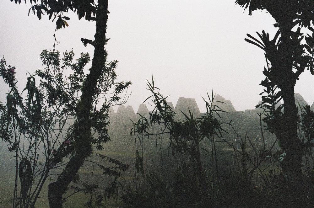 fog/peru
