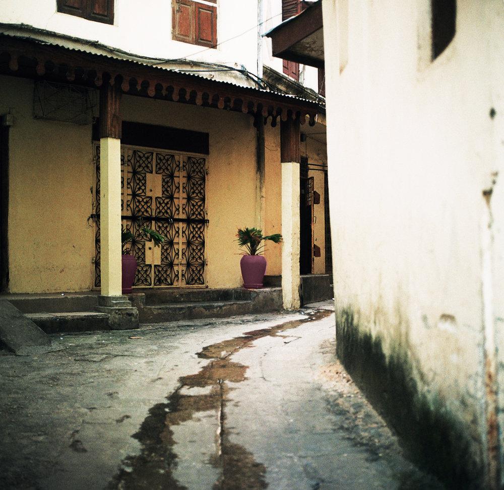 N. Zanzibar 120 11.jpg