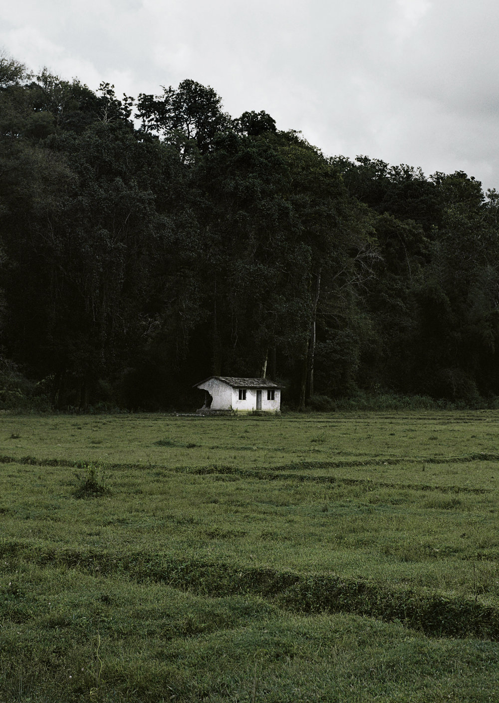 Farmhouse in Wayanad.