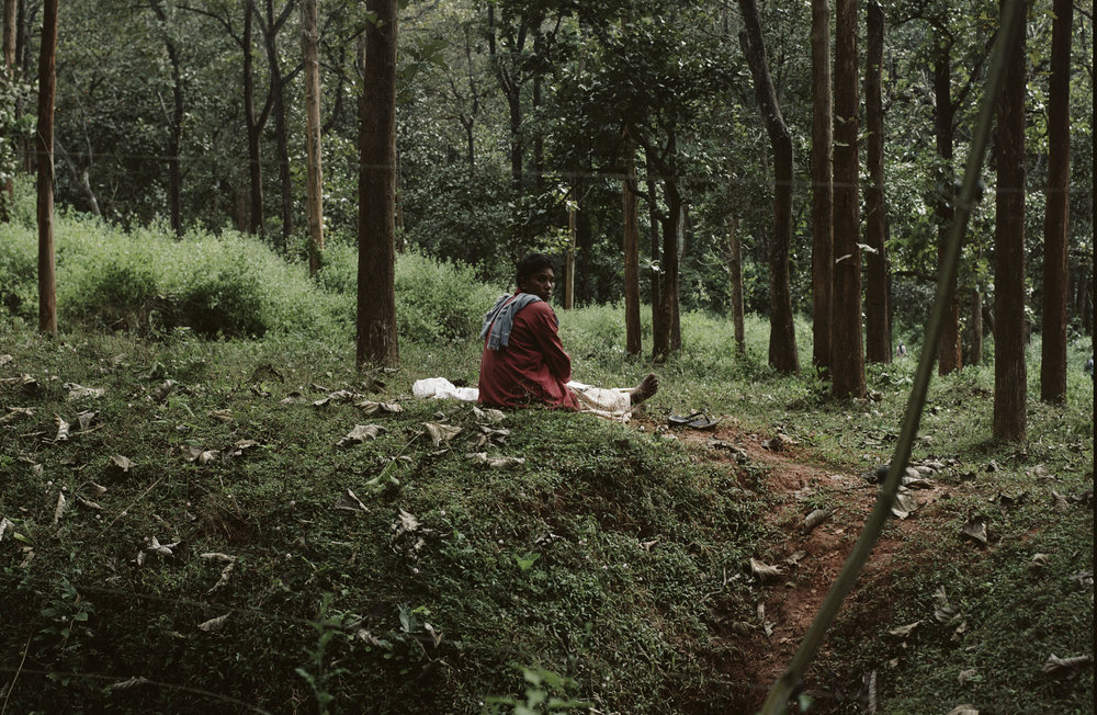 Woman weaving in Wayanad forest.