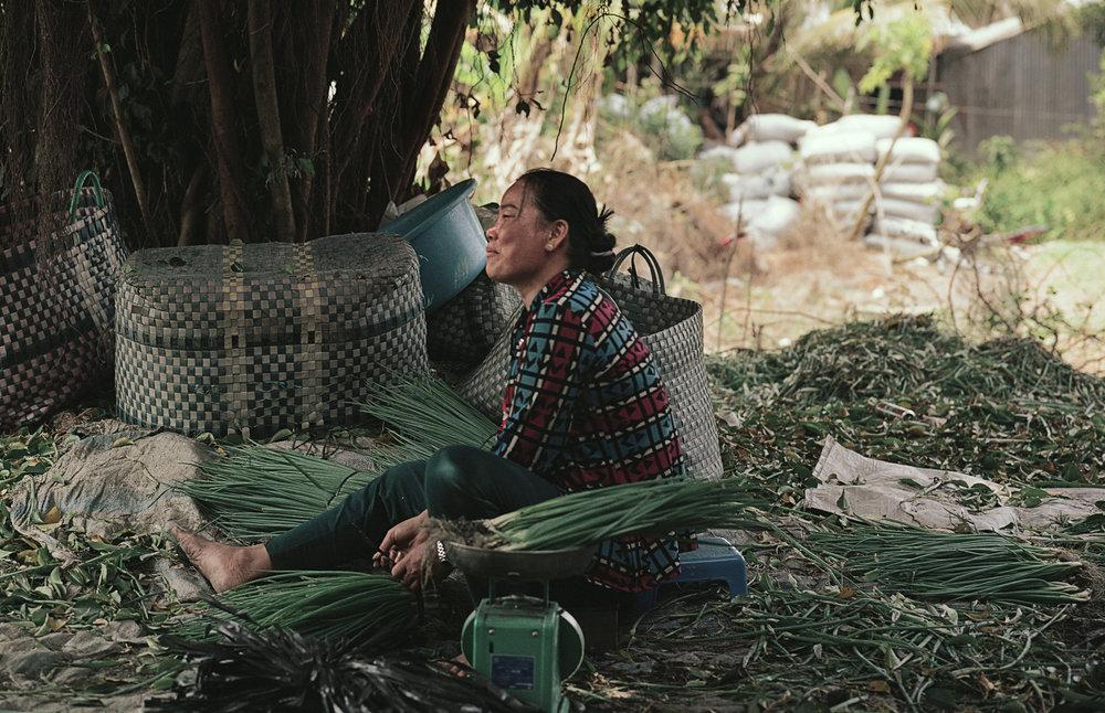 Vietnam 2019 120 2.jpg