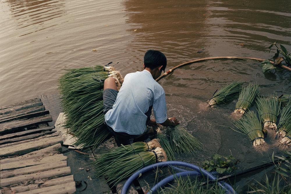 Vietnam 2019 120 12.jpg