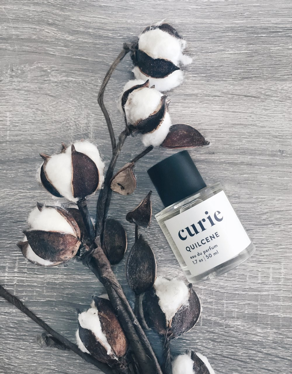 CURIE - 1. QUILCENE EAU DE PARFUMI'm always on the search for plantbased skincare, haircare, and artisanal fragrances and am so excited to find you! I absolutely love that Curie focuses on clean, natural formulas at amazing prices. The Quilcene is a unisex scent and has a wonderful bouquet of bergamot, conifer, and oak moss.