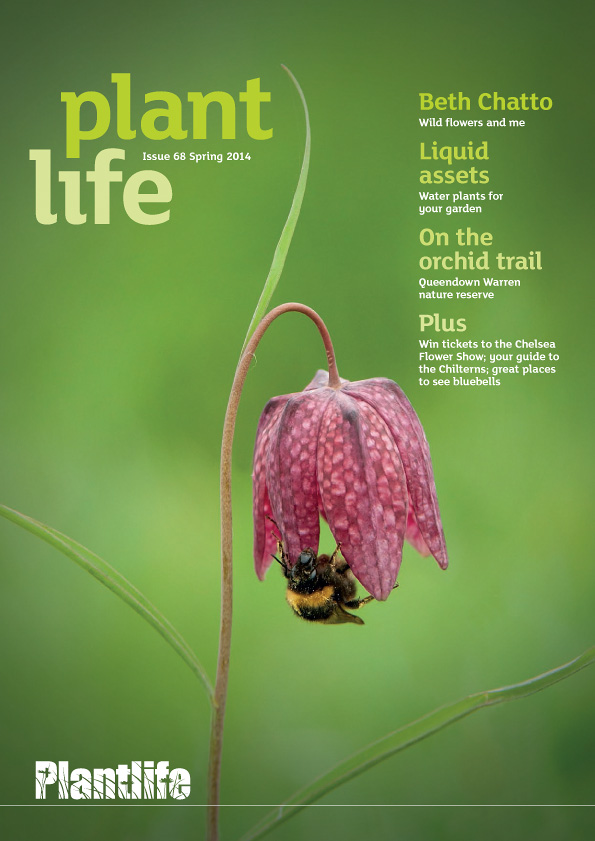 Plantlife cover image