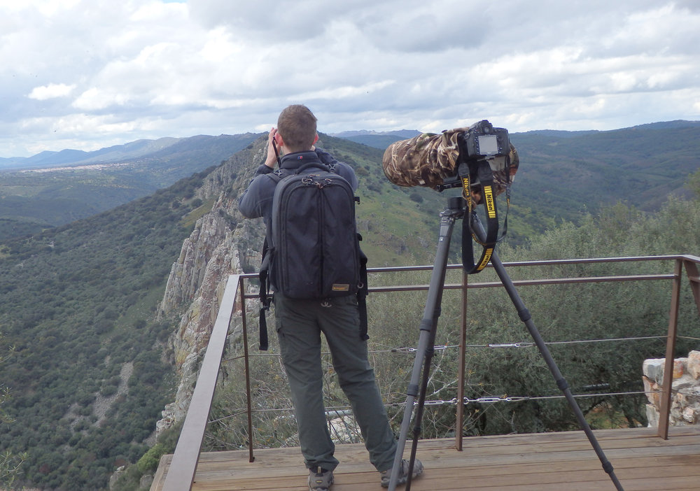 Photographing vultures in Monfragüe National Park, Spain
