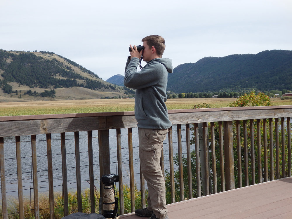Scanning for waterbirds in the Peruvian Andes