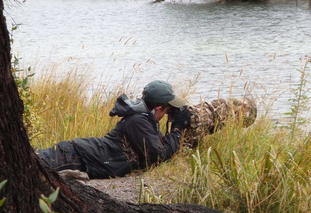 Waiting for beavers in Grand Teton National Park