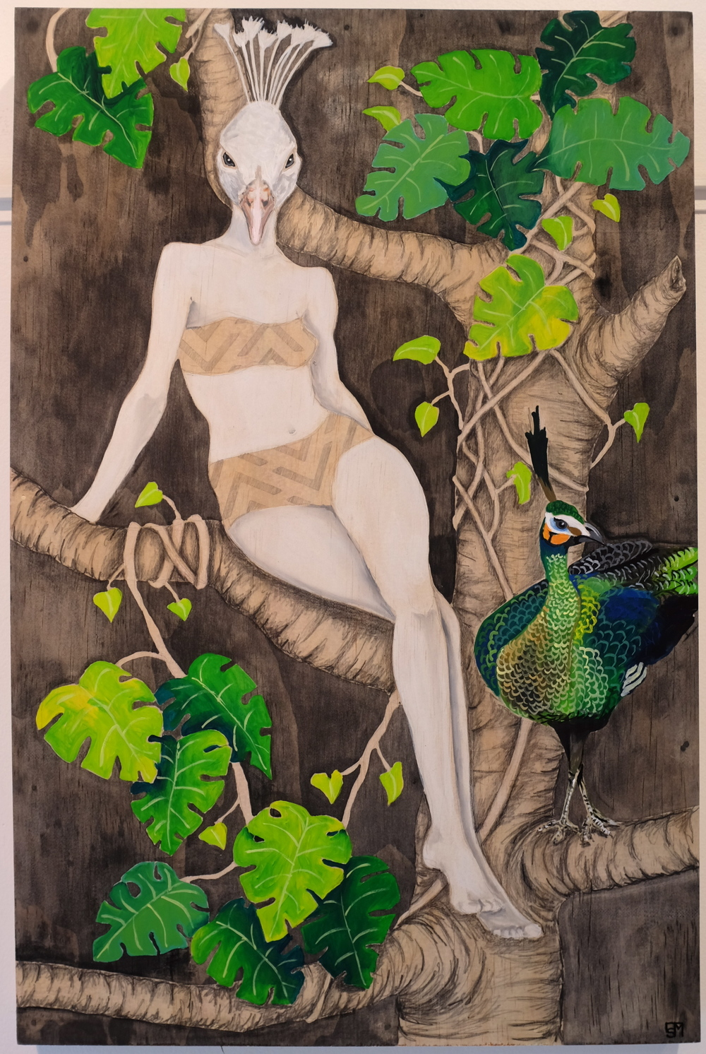 Steamy Nights  From the Glamour Bird Series.  Acrylic and Graphite on Plywood, 610mm x 400mm.