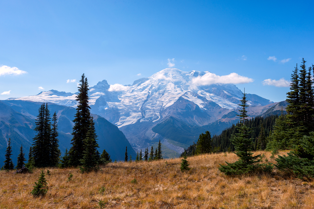2015_10-Mt-Rainier-2-web.jpg
