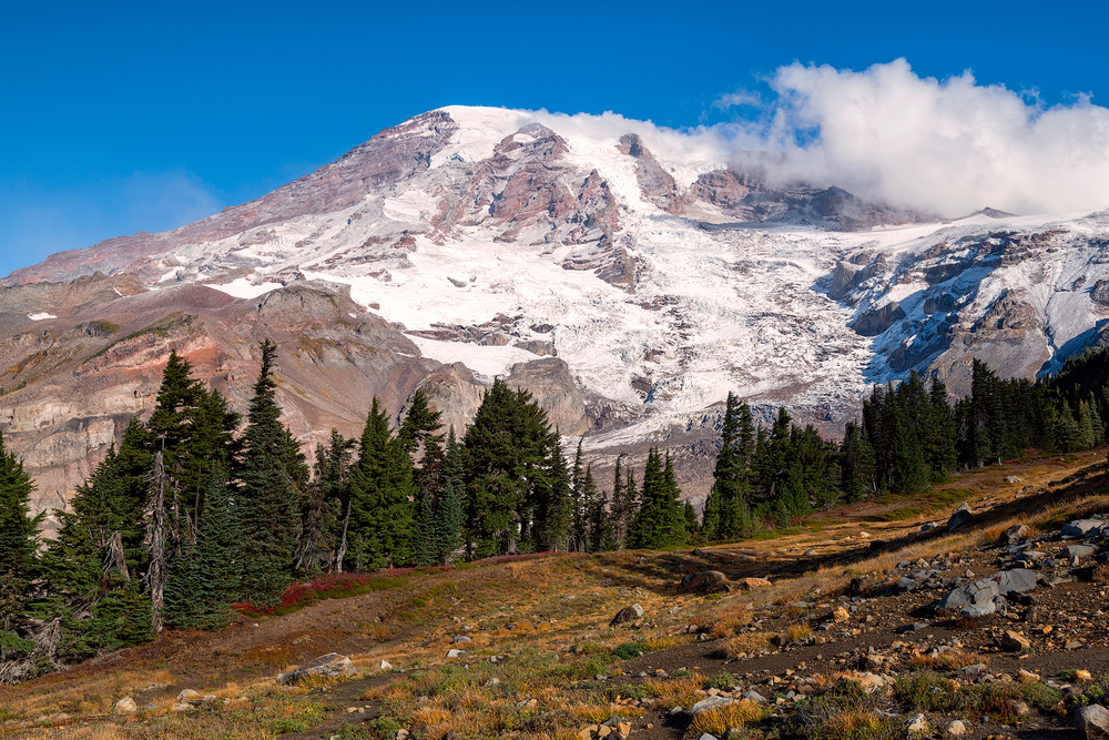 2015_10-Mt-Rainier-web.jpg