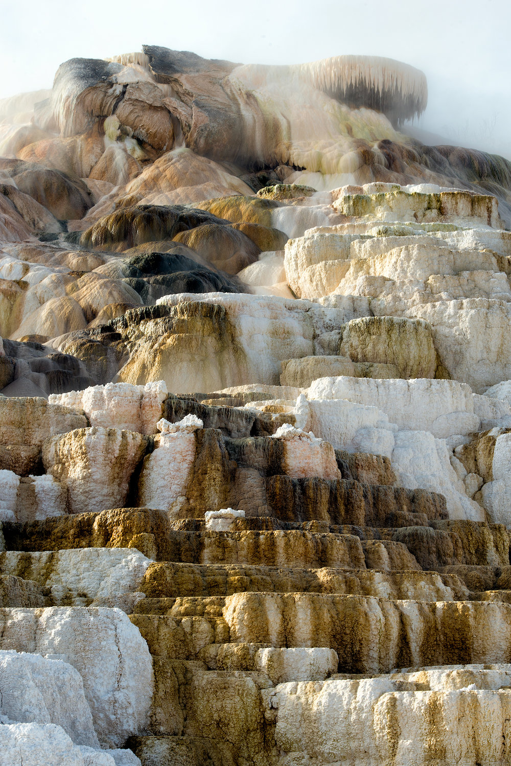 2015_10-Yellowstone-Mammoth-Hot-Springs-4-web.jpg