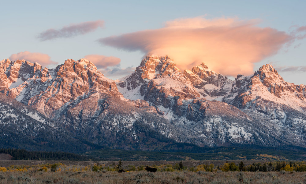 2017_10-Grand-Tetons-Moose-at-Sunrise-copy.jpg