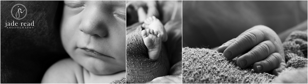 gold coast newborn photographer jade read photography baby photo ideas