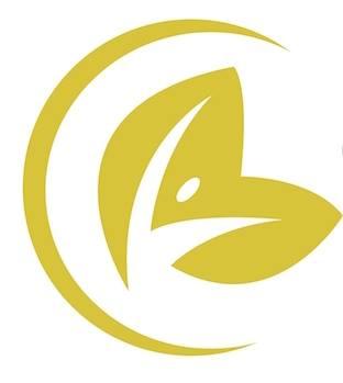 confident life logo.jpg