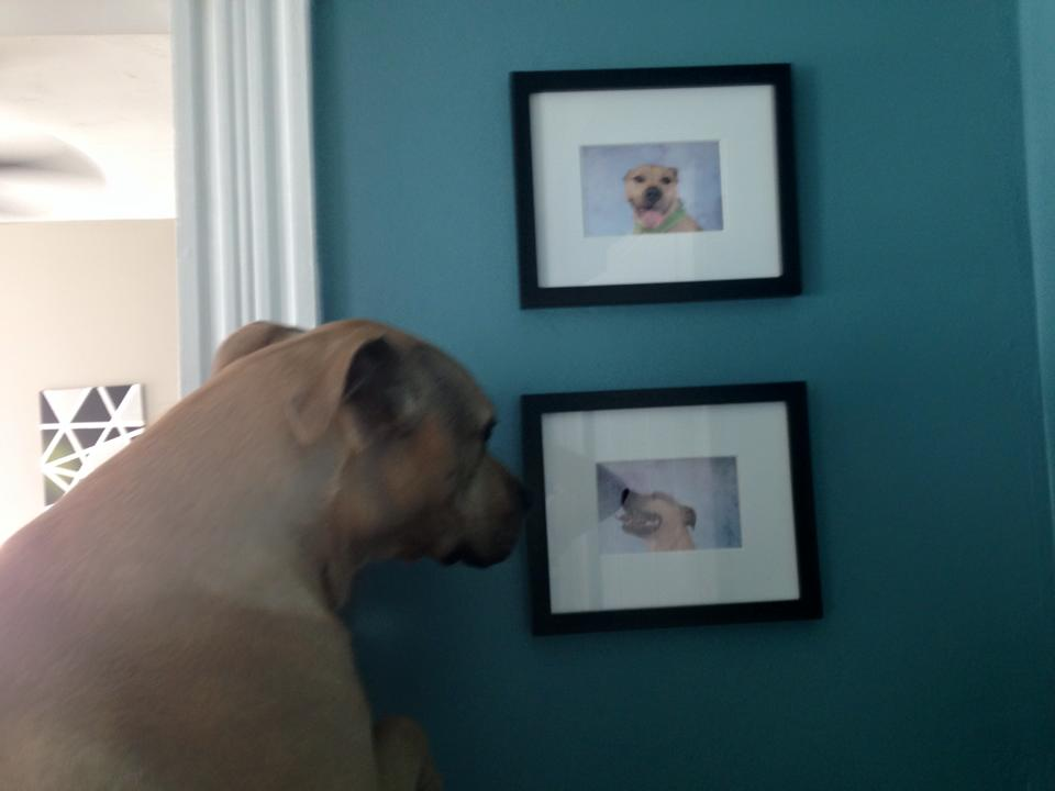 Chase, a handsome photo booth patron, admiring the new artwork for his house...