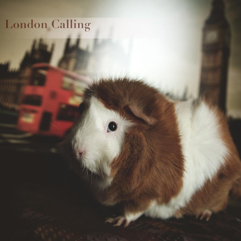 londoncalling2.jpg
