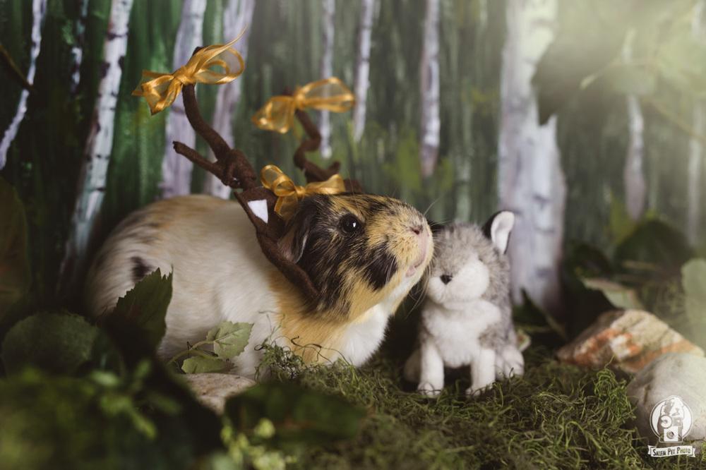 "Ginny the ""Deer"""